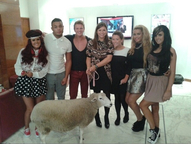 The Valleys cast with their sheep