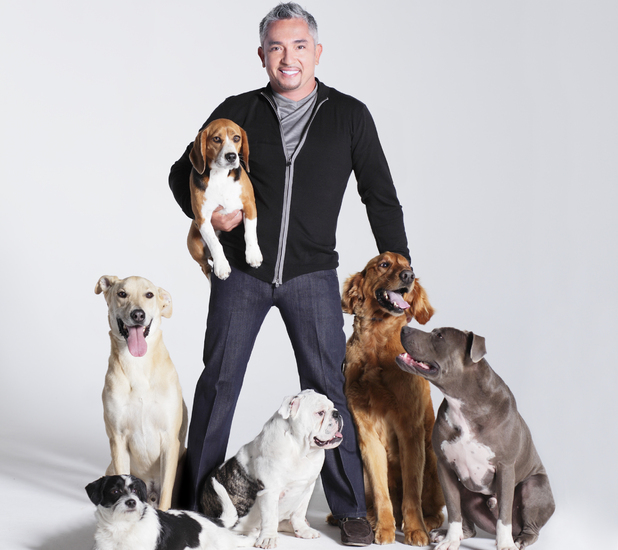 Cesar Millan