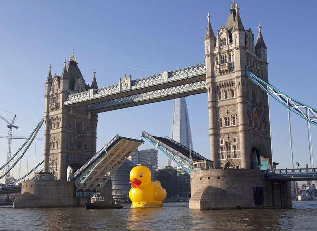 giant-rubber-duck-tower-bridge.jpg