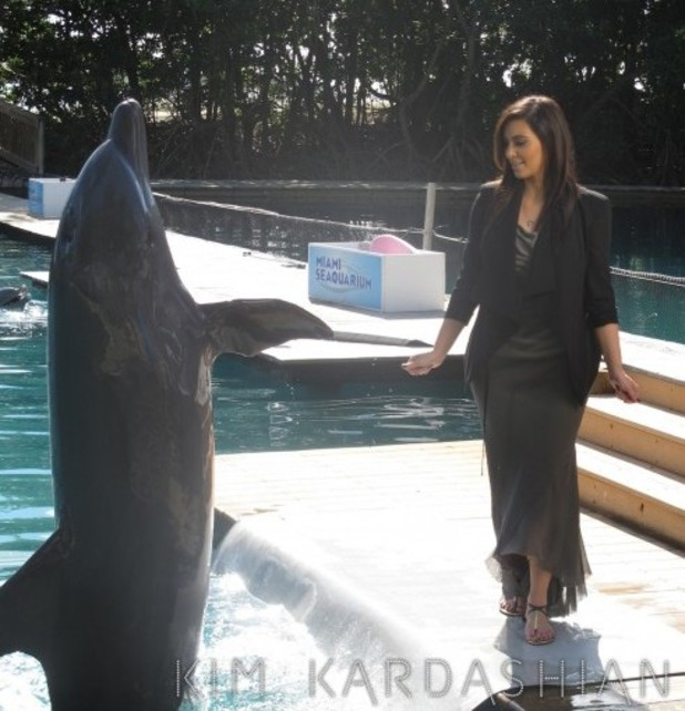 Kim Kardashian poses opposite dolphin in Miami