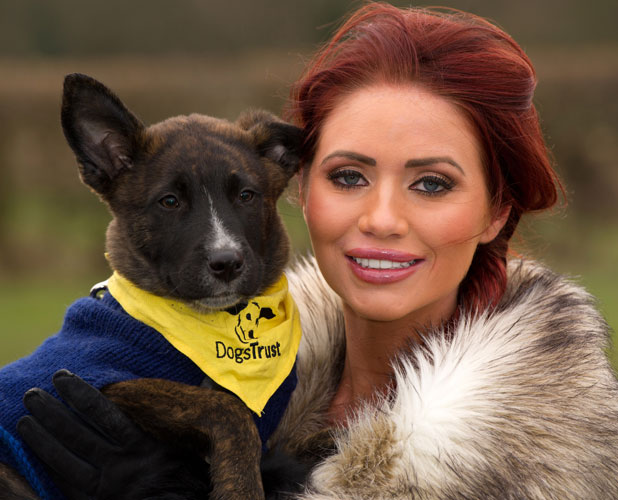 Amy Childs visits Dogs Trust Essex Rehoming Centre, Wickford, Essex, Britain - 20 Feb 2013