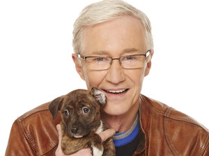 Paul O'Grady: For The Love Of Dogs, Thu 9 May