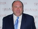 James Gandolfini, Eighth Annual Stella by Starlight Benefit Gala held at Espace, 10 June 2013