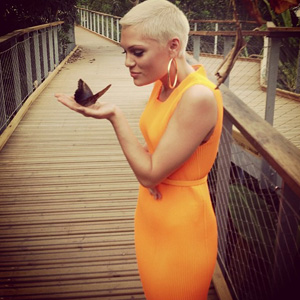 Jessie J at the Eden project before her gig. Cornwall (14 July)