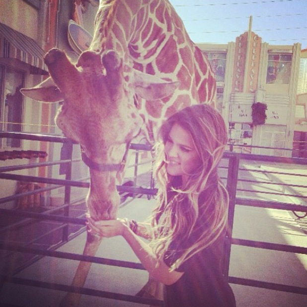 Khloe Kardashian poses with giraffe on Kris talk show - 19 July