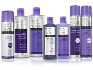 Touch of Silver Product Main