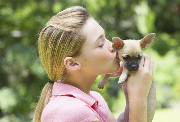MODEL RELEASED Girl kissing puppy dog 2000s