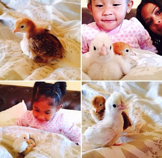 Christina Milian and daughter Violet with baby chicks - 28.9.2013