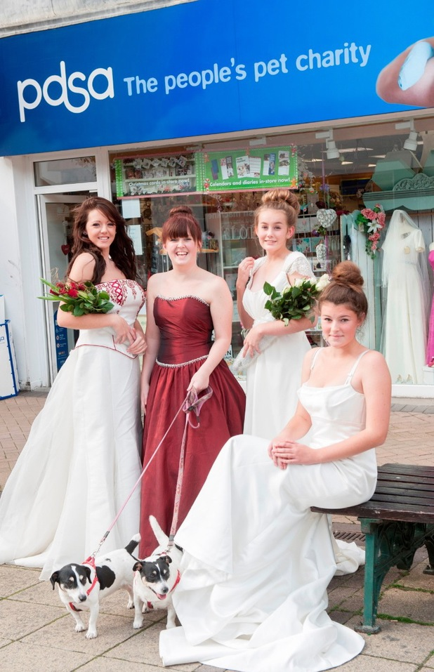 PDSA wedding dresses