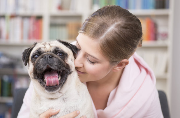 MODEL RELEASED Young woman cuddling with pug dog 2012