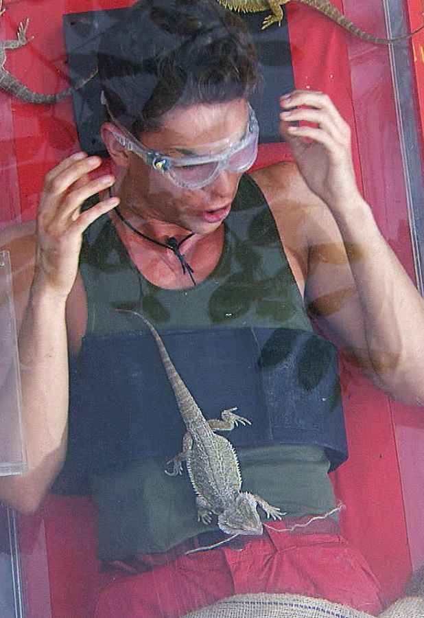 Joey Essex makes friends with a lizard during his first trial on ITV1's 'I'm A Celebrity Get Me Out Of Here', due to air on 17 Nov 2013
