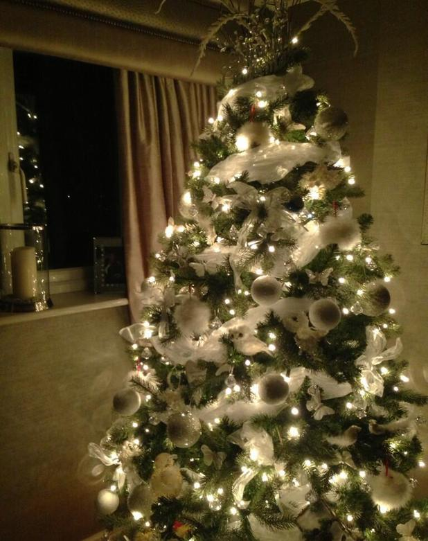 Mark Wright and Michelle Keegan get festive by putting up their Christmas tree - 25 November 2013