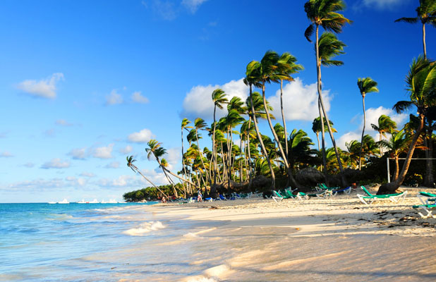 Tropical sandy beach with palm trees in Dominican republic, Stock Image