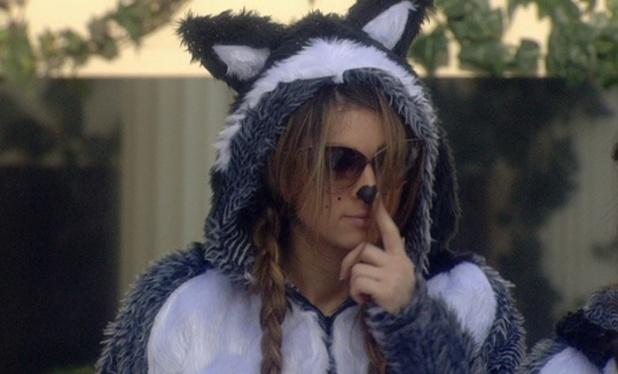 Dappy , Lee Ryan, Casey Batchelor, Luisa Zissman dress as husky dogs for Celebrity Big Brother challenge - January 2014