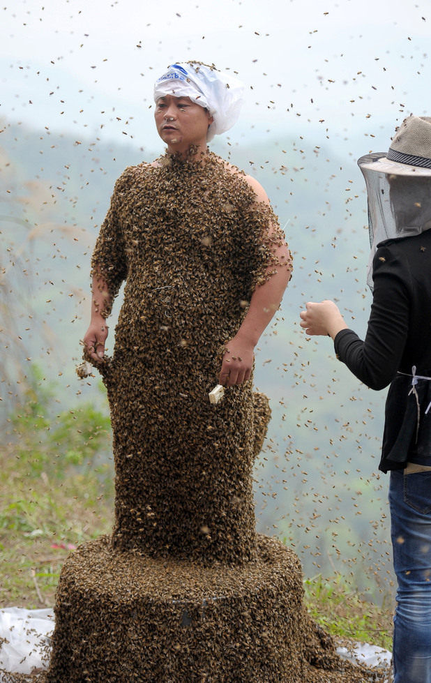She Ping covered in bees
