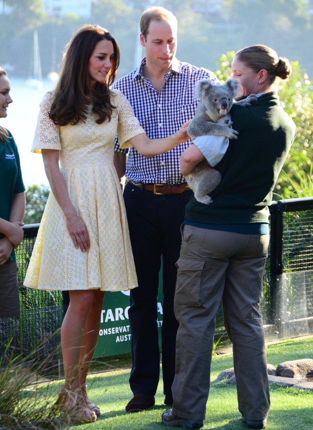 Prince William and Catherine, Duchess of Cambridge, visit Taronga Zoo in Sydney. The royal couple were introduced to some of the zoo's animals, including a Koala bear, 20 April 2014