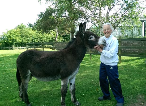 Mary Beetham, donkey Jaffa scared off would-be intruder