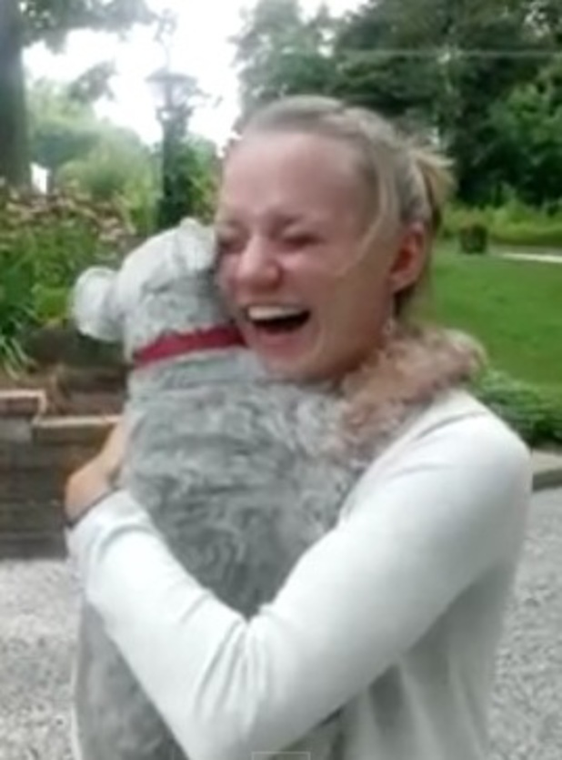 Casey reunited with his owner Rebecca Ehalt