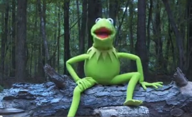 Kermit the Frog does ice bucket challenge - before shot