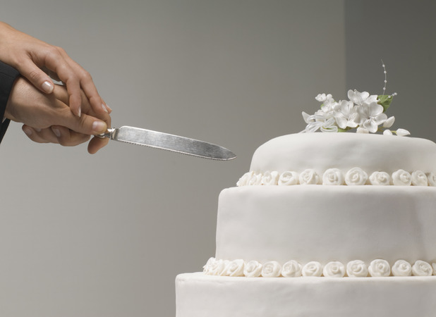 Dog ate couple's wedding cake