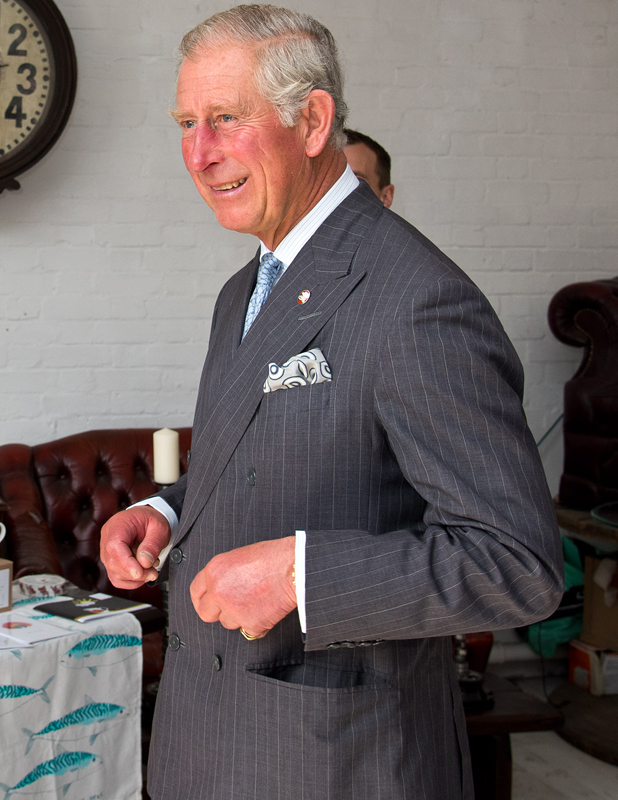 Prince Charles, Prince of Wales on September 9, 2014 in London, England. (Photo by Ben A. Pruchnie - WPA Pool/Getty Images)