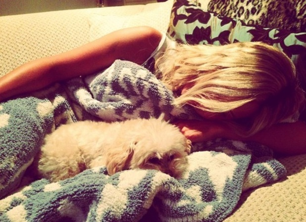 Ashley Tisdale and her dog Maui after her honeymoon 20 September