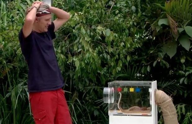 I'm A Celebrity...Get Me Out Of Here's Jimmy Bullard faces three snakes in Critter Cube trial - 24 Nov 2014
