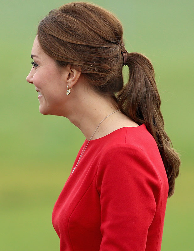 Catherine, Duchess of Cambridge attends East Anglia's Children's Hospices appeal launch at Norfolk Showground on November 25, 2014 in Norwich, England.