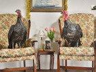 Photos of turkeys re-enacting the stars from Gogglebox (and reading Reveal)!