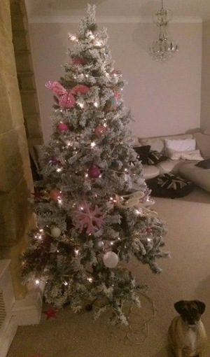 TOWIE's Ricky Rayment shares picture of Blake after he makes hole in Christmas tree - 23 Dec 2014