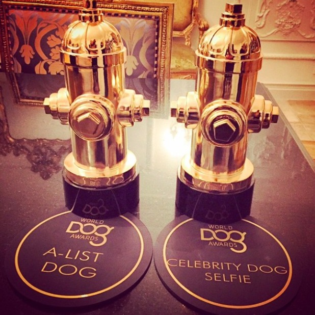 Paris Hilton shows off her new pet pooch Princess Paris Jnr as Prince Hilton wins awards at Dog Awards, 10 January 2015