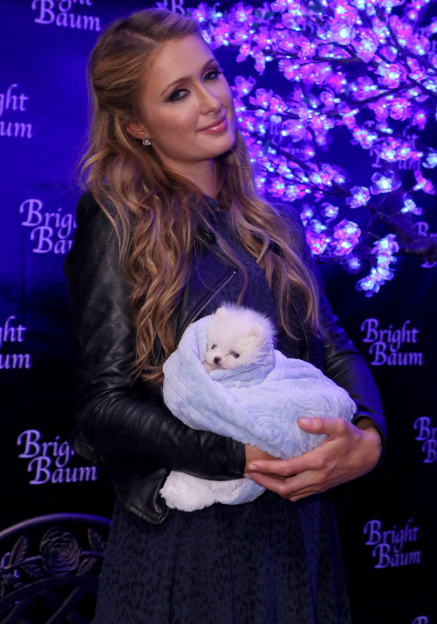 Paris Hilton takes her new pet puppy to Kari Feinstein's Pre-Golden Globes Style Lounge in West Hollywood - 8 January 2015