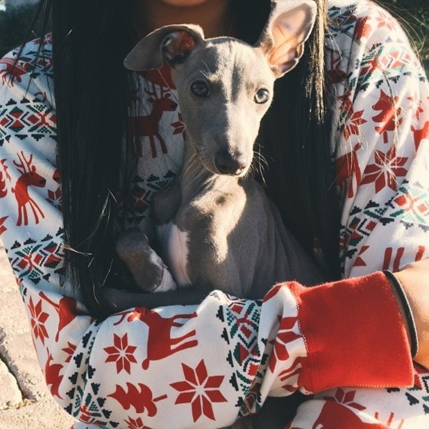 Kylie Jenner carries her new pet puppy Norman on Christmas Day - 25 December 2014