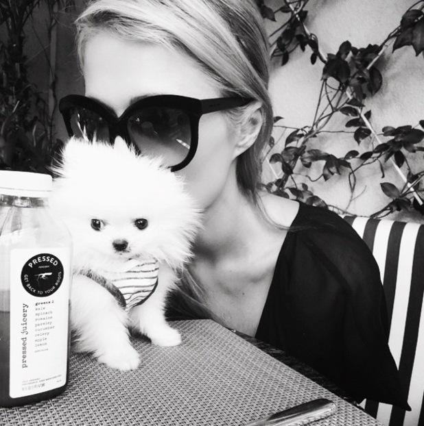 Paris Hilton poses for an instagram picture with her pet puppy Princess Paris Junior - 1 February 2015