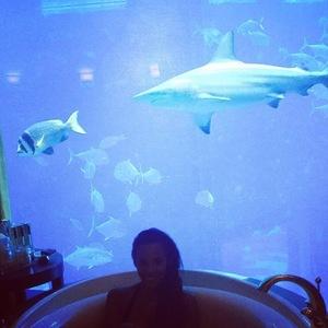 Rochelle Humes shows off aquarium bathroom in Dubai 11 February