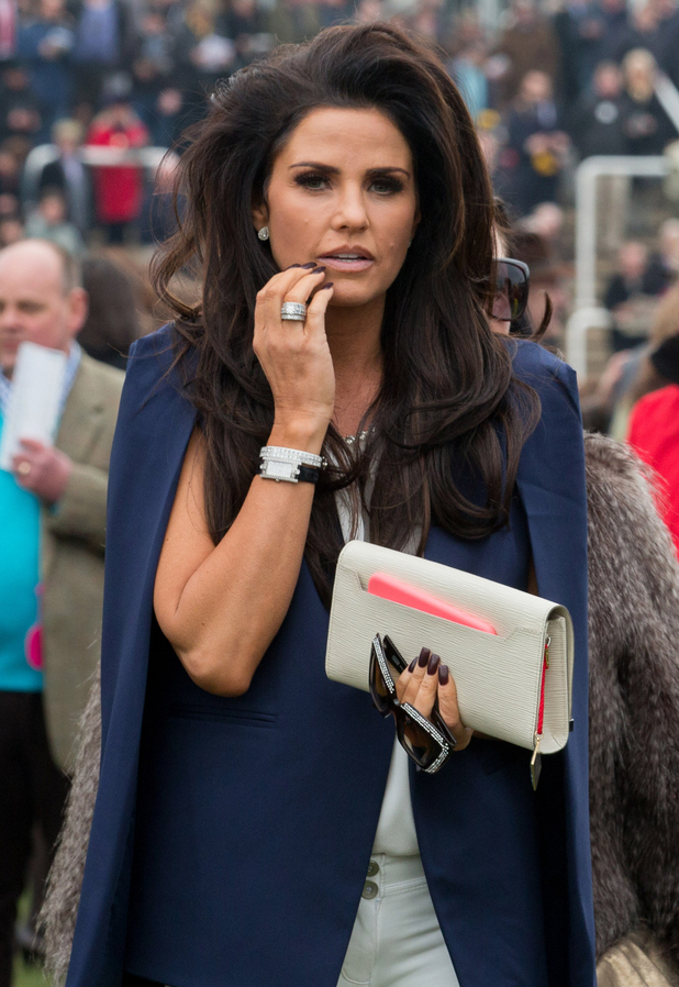 Katie Price looks at horses in the paddock on the second day of the Cheltenham Festival on March 11, 2015 in Cheltenham, England.