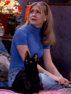 Sabrina the teenage witch, Melissa Joan Hart Sabrina, the Teenage Witch Season 1 Episode 14 Sabrina Through the Looking Glass