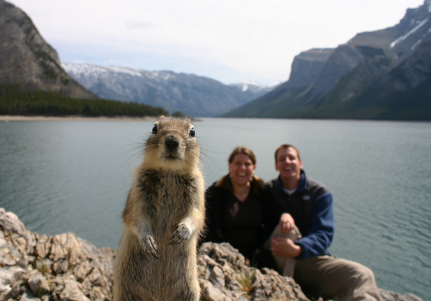 Photo-bomb squirrel is the photo most likely to make us smile