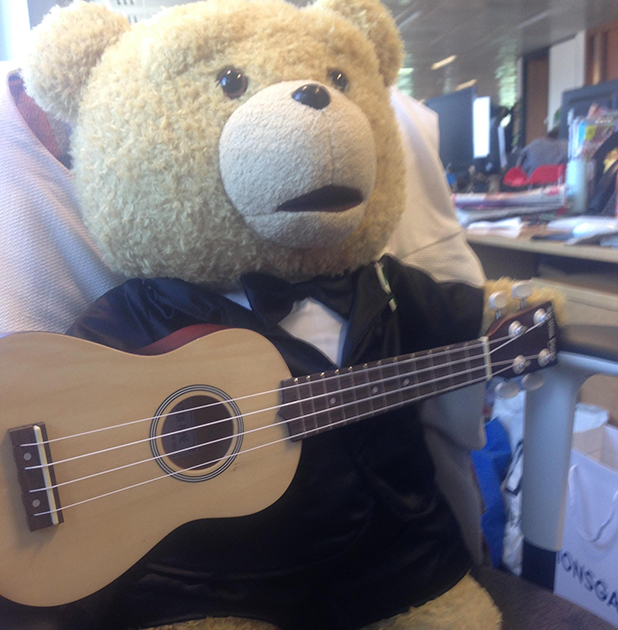 Ted spends a day at the Reveal Office