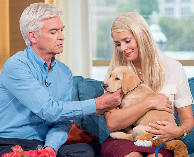 'This Morning' TV Programme, London, Britain - 01 Sep 2015 Phillip Schofield and Holly Willoughby