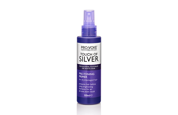 Touch Of Silver Pre Toning Primer £5, 24th September 2015