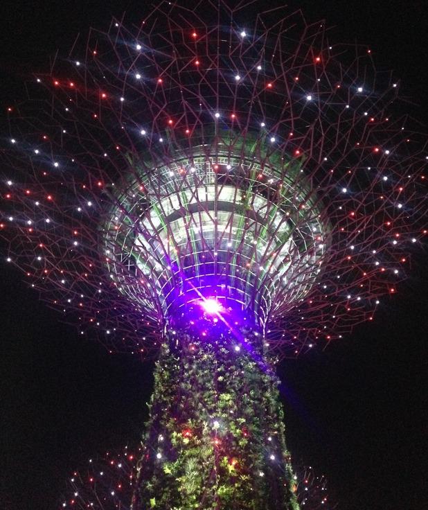 Singapore Supertrees, 24/9/15