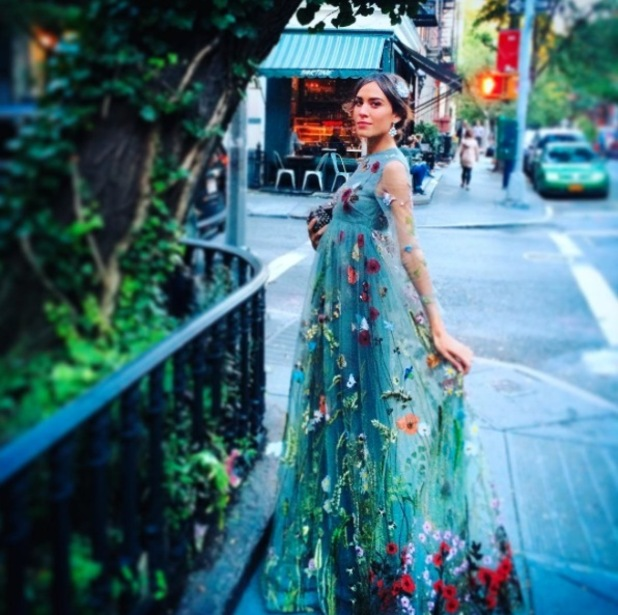 Alexa Chung posts picture of her chiffon dress to Instagram, 15th October 2015