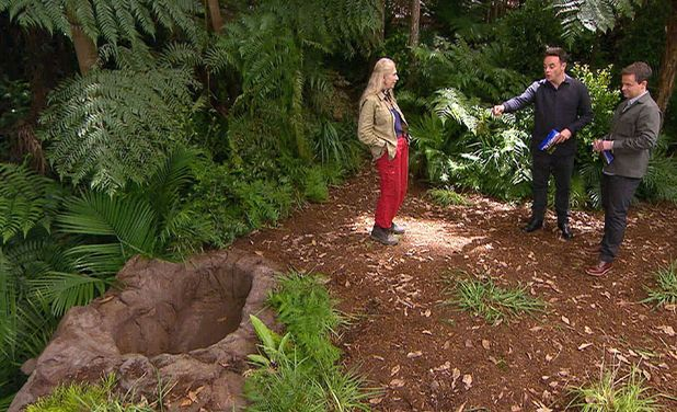 I'm A Celebrity...Get Me Out Of Here!' TV Show, Australia - Bushtucker Trial - The Panic Pit: Lady Colin Campbell with Anthony McPartlin and Declan Donnelly - 18 Nov 2015