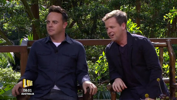 Ant & Dec on I'm A Celebrity Get Me Out Of Here NOW discussing Lady C 25 Nov 2015