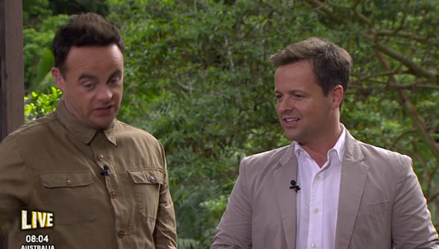 I'm A Celebrity: Ant & Dec react after Lady C angers Yvette and Susannah in t-shirt row 26 Nov 2015
