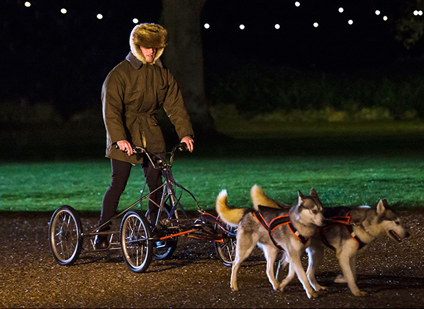 'The Only Way is Essex' cast filming, Suffolk, Britain - 28 Nov 2015 Tommy Mallet arrives via husky.