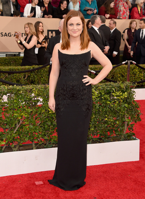 Reveal fashion: Screen Actors Guild Awards 2016