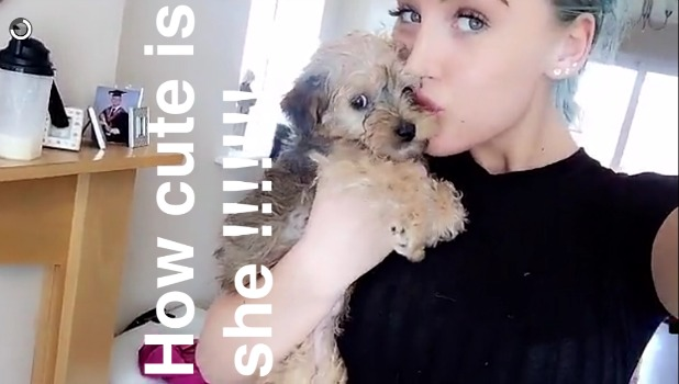 Ex On The Beach's Helen Briggs gets a puppy March 2016