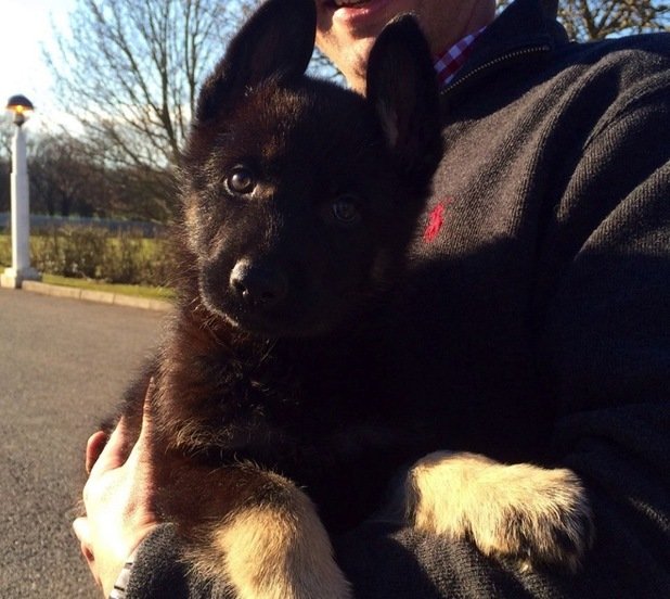Bodie is Police Scotland's newest recruit